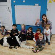 Dogoterapia w przedszkolu